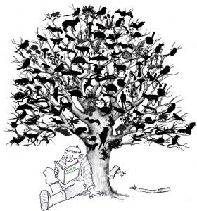 Plume de Naturalistes_Logo